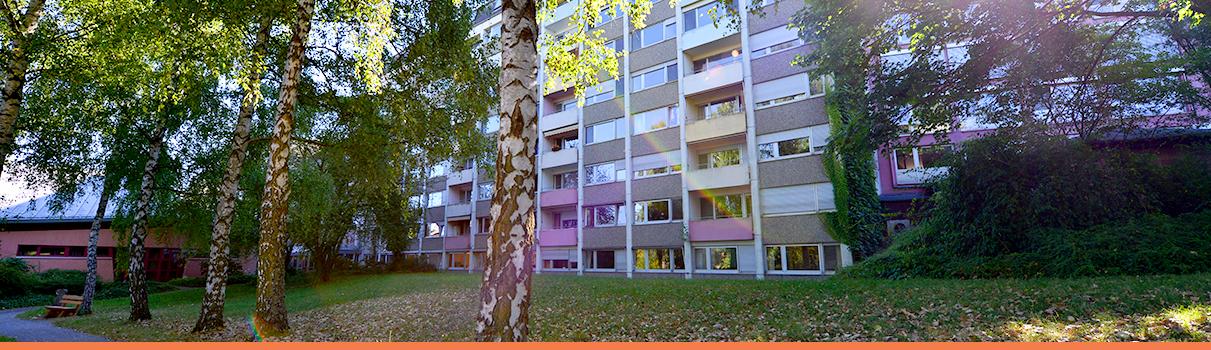 Johanneshaus Öschelbronn Header Johanneshaus